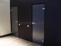 Распашные двери из матового стекла